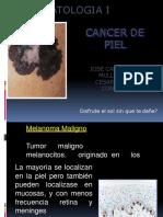 Cancer a La Piel