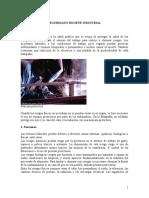 SEGURIDAD E HIGIENE INDUSTRIAL(final).doc