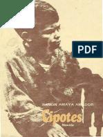 Cipotes (Ramon Amaya Amador)