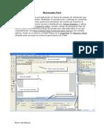 Macromedia Flash - Resumen