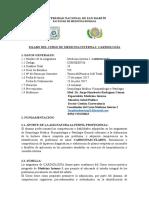 SILABO CARDIOLOGIA-UNSM-FMH 2017.docx