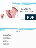 Cancer Endometrio