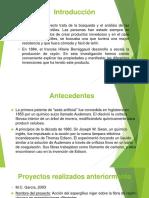 Elaboracion Del Rayon (Powerpoint)