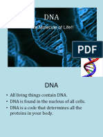 dna stx and rep ppt