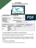 SYLLABUS modelos y pracicas Pasorales Nocurno.docx