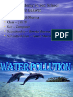 Water Pollution2