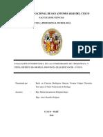 Evaluacion Etnobotanica en Las Comunidades de Choquepata y Tipon, Distrito de Oropesa, Cusco TESIS UNSAAC