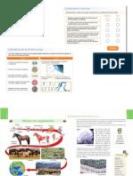 Biología 6  -evaluación meiosis -mitosis