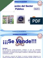 Tema Nº 4 Privatización.pdf