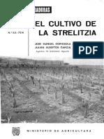 Cultivo Strelitzia 1972-02-03