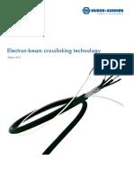 Electron Beam Crosslinking Technology