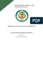 GUSTAVO POALACIN_PLAN DE MANEJO DE RIESGOS LABORALES.docx
