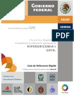 GRR_SSA_216_09.pdf