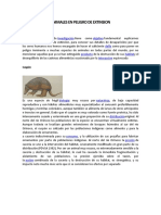 ANIMALES EN PELIGRO DE EXTINSION.docx
