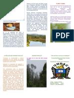 Historia Del Bosque Sollet El Area de Conservación Municipal