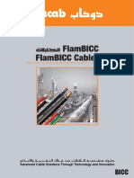 Flam BICC for web.pdf
