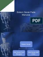 Sistem Gerak PPT