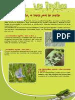 Papillons - Fiche péda Eau & Rivières de Bretagne