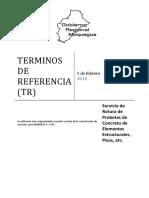 318479957-Terminos-Re-Referencia-Rotura-de-Probetas.docx