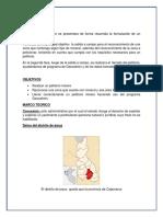 H PETITTORIO.docx