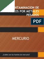 CONTAMINACION-DE-SUELOS-POR-METALES-PESADOS-final.pptx