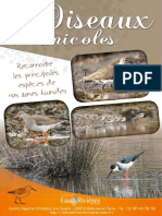 Limicoles - Livret Eau & Rivieres de Bretagne