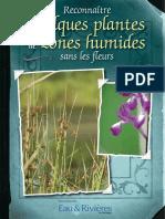 Plantes de Zones humides - Livret Eau & Rivieres de Bretagne