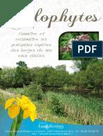 Hélophytes - Livret Eau & Rivieres de Bretagne