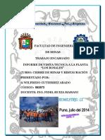 INFORME DE VISITA TÉCNICA A LOS ROSALES.docx