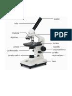 microscopio imprecion