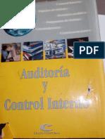 Auditoria y Control Interno