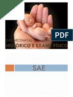 Aula_-_SAE_Neonatal_-_Histrico