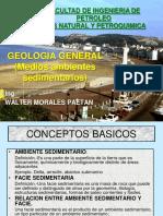 5ºmedios Ambientes Sedimentarios2017-1