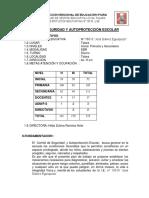 PLAN DE COSAPE.docx