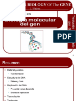 BioMolGen-Watson traduced(edwinw).ppt
