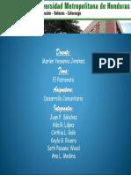 desarrollo comunitario.pptx
