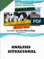 Presentacion Ganado Vacuno de Carne y Leche 2010