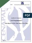 apostila_sas.pdf