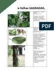 apostiladefolhassagradas-140414173421-phpapp02.docx