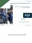 programa mantenimiento WCM.pdf