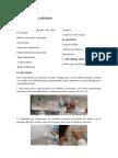 Metodos Info Final(1)