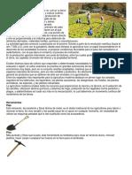 Agricultura y electricidad