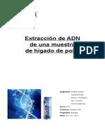 Extracción de ADN de Una Muestra de Hígado de Pollo