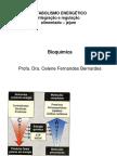 integracao-metabolismo-energetico.pdf