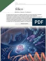 Acidofolico.pdf