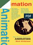 Animation pocket