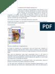 INTERRUPTOR TERMO MAGNÉTICO.docx