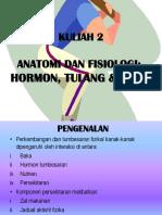 2- ANATOMI DAN FISIOLOGI KANAK2.ppt