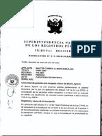 011-2008-SUNARP-TR-T.pdf