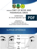Anatomy of Nose (Viliacindydyo)
